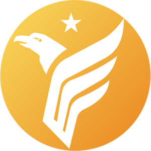 飞鹰网商国际系统